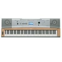 Yamaha DGX-630 E Piano Test